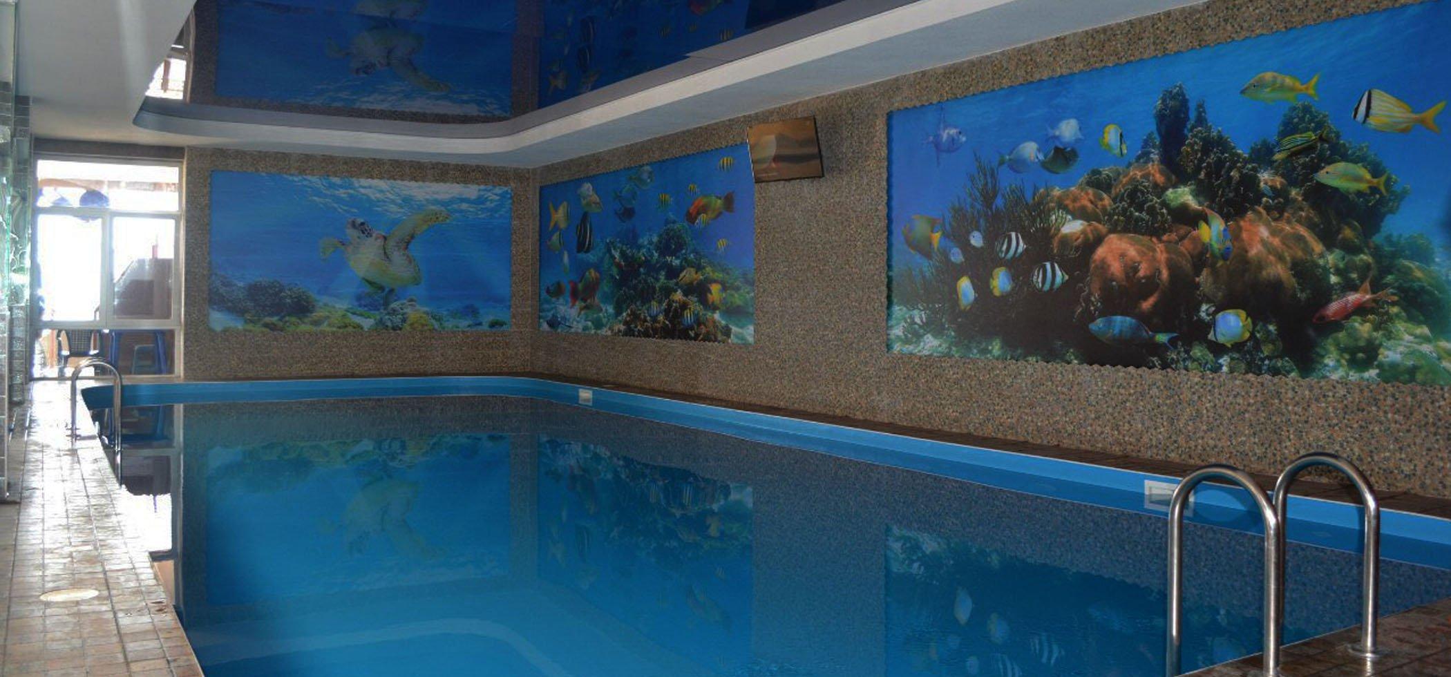 арго бассейн